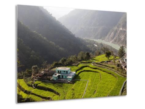 Farm Among a Green Fields Close to Rishikesh, Uttarkhand, India, Asia--Metal Print