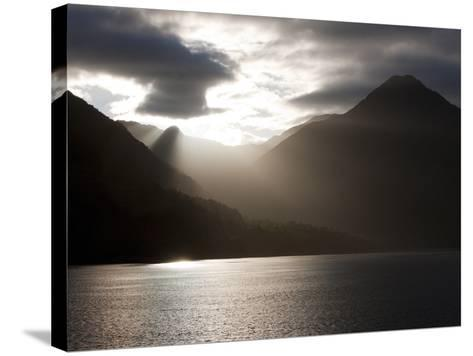 Fjord, Thomson Sound, South Island, New Zealand, Pacific-Thorsten Milse-Stretched Canvas Print