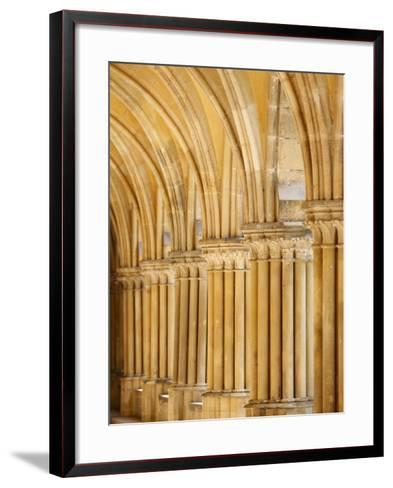 Capitals and Pillars, Royaumont Abbey Cloister, Asnieres-Sur-Oise, Val D'Oise, France, Europe--Framed Art Print