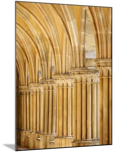 Capitals and Pillars, Royaumont Abbey Cloister, Asnieres-Sur-Oise, Val D'Oise, France, Europe--Mounted Photographic Print