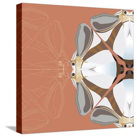 Moth Meditation-Belen Mena-Stretched Canvas Print