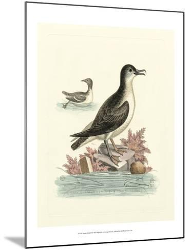 Aquatic Birds III-George Edwards-Mounted Art Print