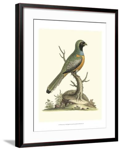 Poised in Nature I-George Edwards-Framed Art Print