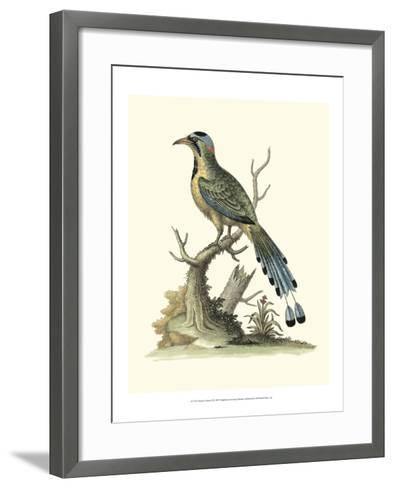 Poised in Nature II-George Edwards-Framed Art Print