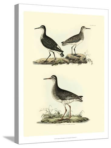 Selby Sandpipers II-John Selby-Stretched Canvas Print