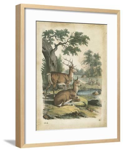 Nature's Gathering IV-John Wiek-Framed Art Print