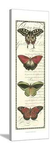 Butterfly Prose Panel I--Stretched Canvas Print
