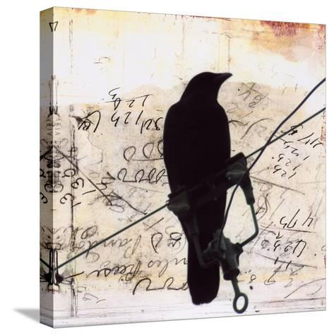 What Crows Reveal I-Ingrid Blixt-Stretched Canvas Print