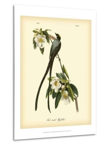 Fork-Tailed Flycatcher-John James Audubon-Metal Print