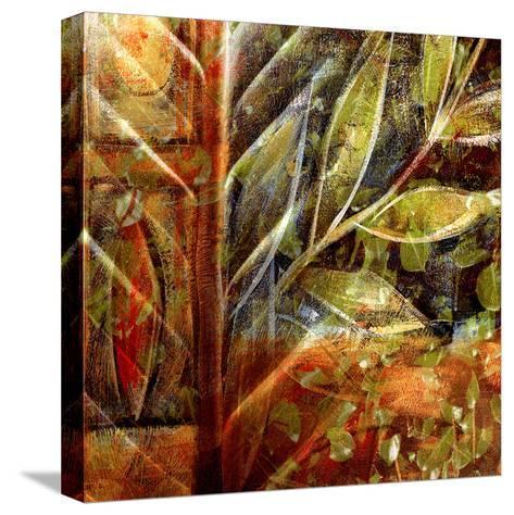 Fillmore II-Danielle Harrington-Stretched Canvas Print
