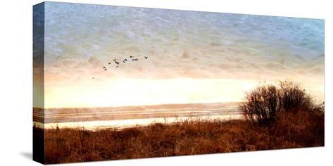 Tide I-Danielle Harrington-Stretched Canvas Print