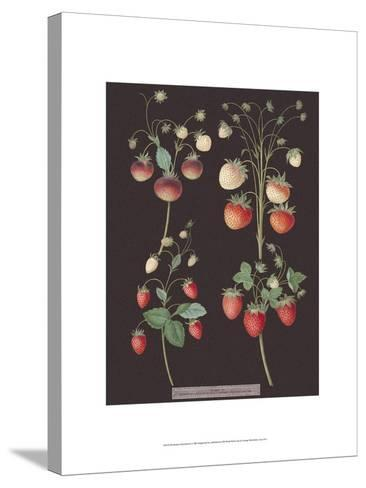 Strawberries-George Brookshaw-Stretched Canvas Print