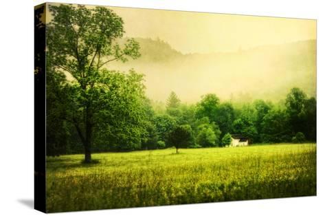 Farmhouse on Foggy Morn'-Danny Head-Stretched Canvas Print