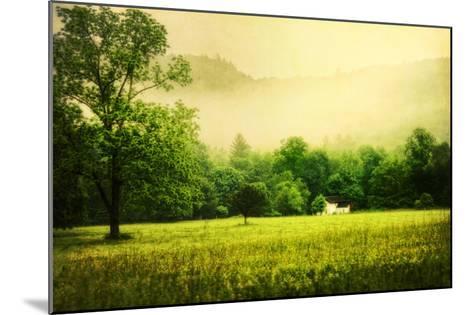 Farmhouse on Foggy Morn'-Danny Head-Mounted Art Print