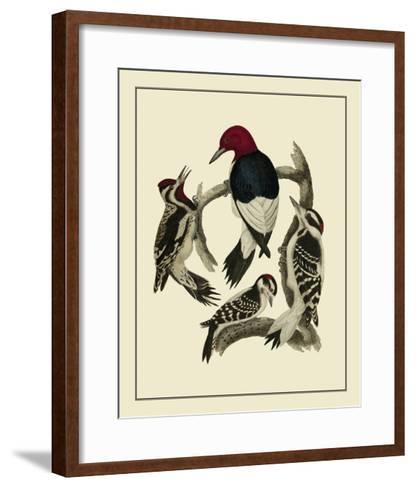 Bird Family III-A^ Lawson-Framed Art Print
