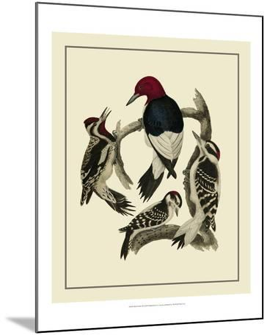 Bird Family III-A^ Lawson-Mounted Art Print