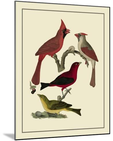 Bird Family IV-A^ Lawson-Mounted Art Print