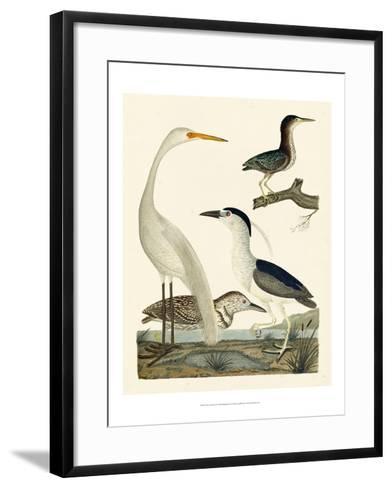 Heron Family II-A^ Wilson-Framed Art Print