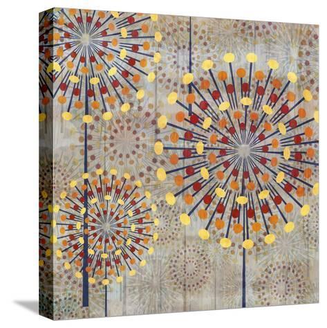 Scatter I-James Burghardt-Stretched Canvas Print