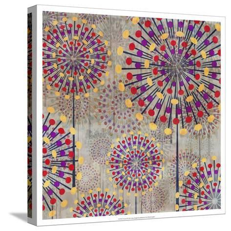 Scatter II-James Burghardt-Stretched Canvas Print