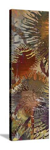 Thistle Panel IV-James Burghardt-Stretched Canvas Print