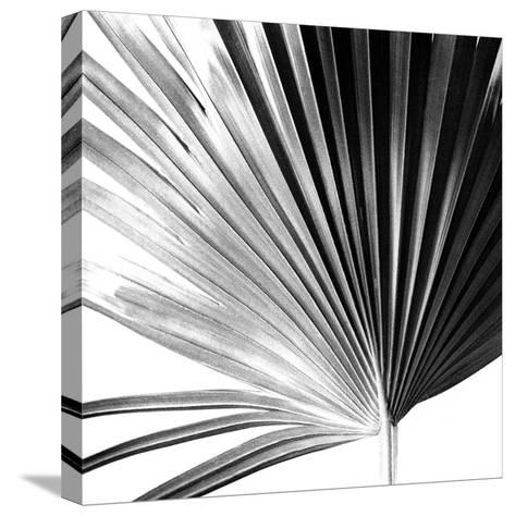 Black and White Palms IV-Jason Johnson-Stretched Canvas Print