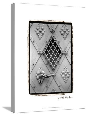 Distinguished Doors I-Laura Denardo-Stretched Canvas Print