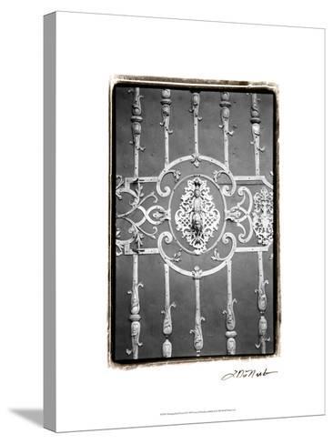 Distinguished Doors II-Laura Denardo-Stretched Canvas Print