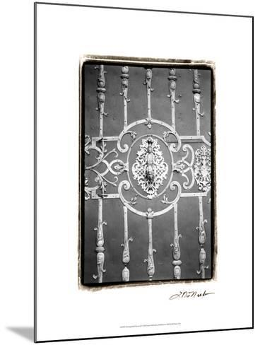 Distinguished Doors II-Laura Denardo-Mounted Art Print