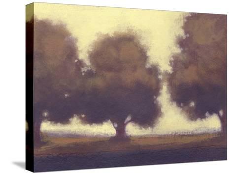 Calm Meadow II-Norman Wyatt Jr^-Stretched Canvas Print