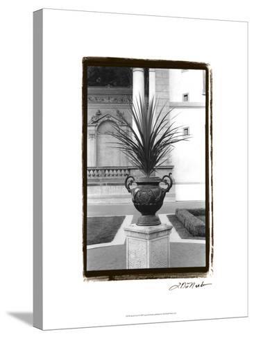Royal Urn I-Laura Denardo-Stretched Canvas Print