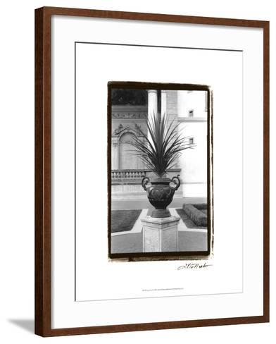 Royal Urn I-Laura Denardo-Framed Art Print