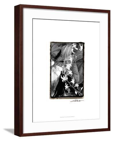 Floral Elegance I-Laura Denardo-Framed Art Print