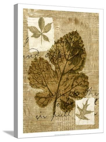 Leaf Collage IV-Kate Archie-Stretched Canvas Print