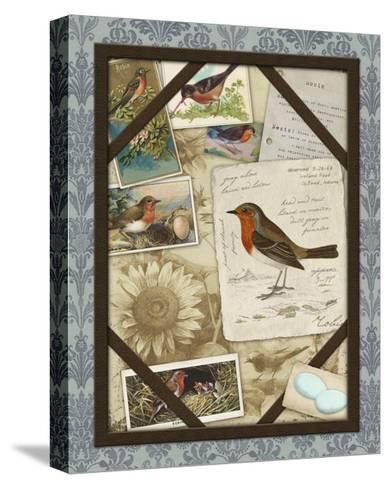 Bird Watching IV-Kate Ward Thacker-Stretched Canvas Print