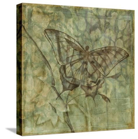 Non-Embellished Ethereal Wings VI-Jennifer Goldberger-Stretched Canvas Print