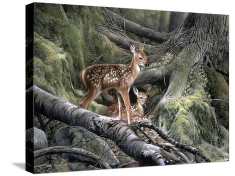 Awakening-Kevin Daniel-Stretched Canvas Print