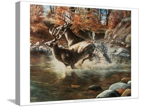 On the Run-Kevin Daniel-Stretched Canvas Print