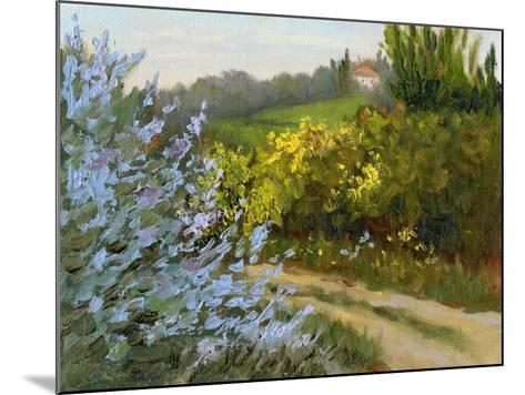 Rosemary by the Road-Mary Jean Weber-Mounted Art Print