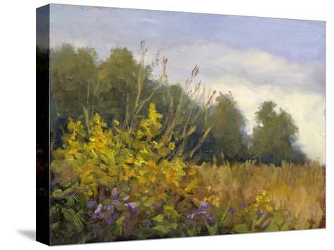 Big Tree Farm-Mary Jean Weber-Stretched Canvas Print