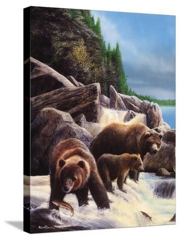 Grizzlies by Falls-Kevin Daniel-Stretched Canvas Print