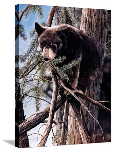 Out on a Limb-Kevin Daniel-Stretched Canvas Print