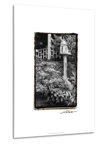 American Breeze V-Laura Denardo-Metal Print