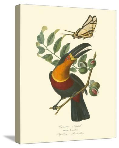 Nature Jardin III-L. Curmer-Stretched Canvas Print
