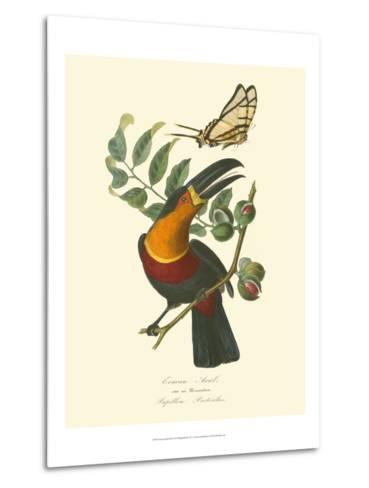 Nature Jardin III-L. Curmer-Metal Print