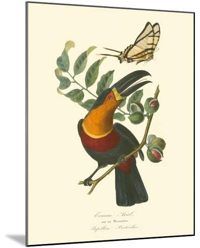 Nature Jardin III-L. Curmer-Mounted Art Print