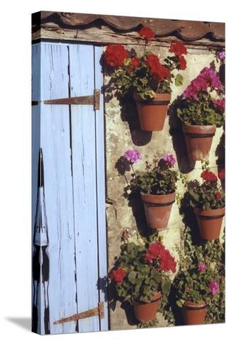 Geranium Wall-Meg Mccomb-Stretched Canvas Print