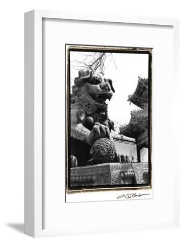 Imperial Lion, Beijing-Laura Denardo-Framed Art Print
