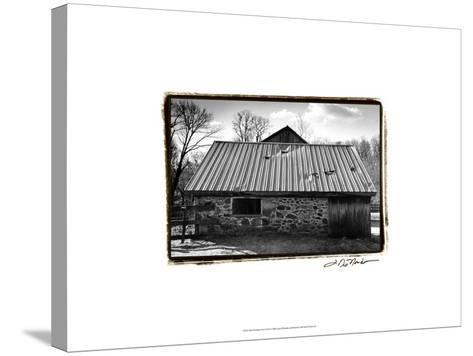 Barn Windows III-Laura Denardo-Stretched Canvas Print