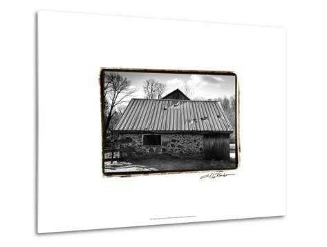 Barn Windows III-Laura Denardo-Metal Print